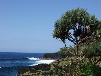 Agence immobilière La Réunion 974